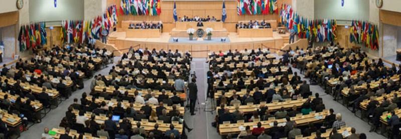 UGT participa en la 105ª Conferencia Internacional del Trabajo